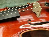 バイオリン教室リンクサイト